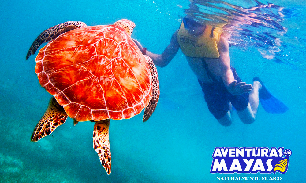 Aventuras-Mayas6-1000x600
